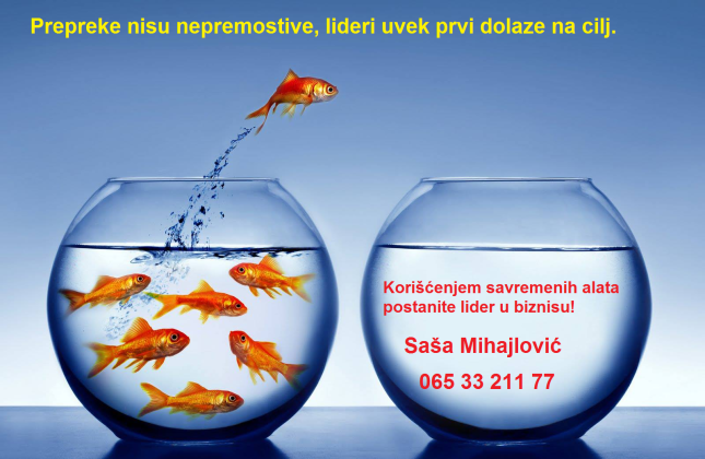 Saša Mihajlović- Business Consultant